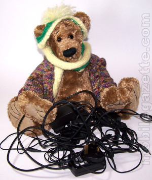 Teddy Bear with chargers